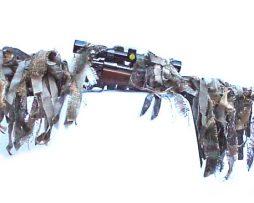 Shaggie-Long-Gun-Cover